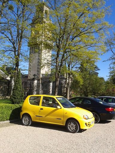photobombing yellow car
