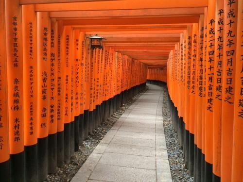 My epic food tour of Japan: sushi, sake, puffer fish and bullet trains