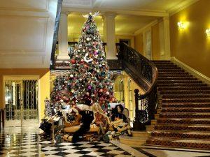 Christmas hotel breaks