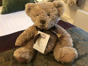 Warwick the teddy bear of New Hall hotel Birmingham