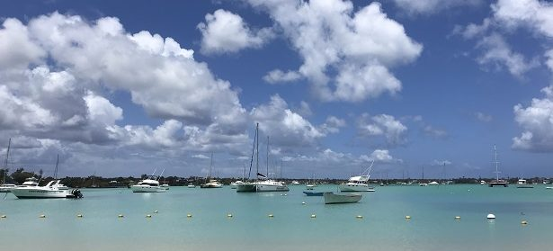 Dolphins, rum, yoga and sun: my action-packed fortnight in Mauritius