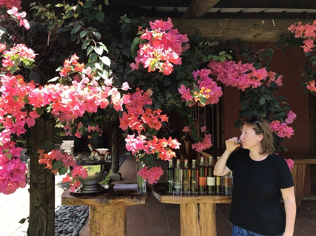 tasting eight rums at the Chamarel distillery